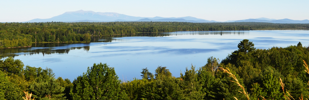 Lakes and trees with Mount Katahdin far in the background